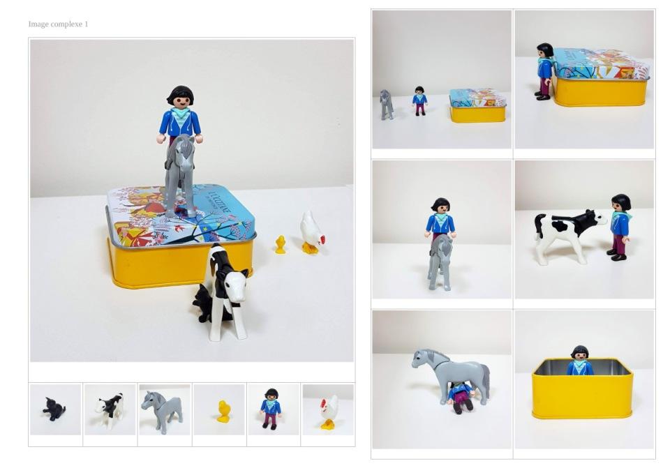 Playmobils FLE Jouer en classe Localisation animaux enfants
